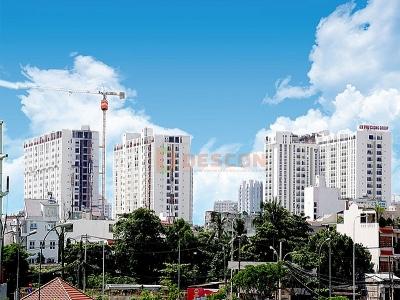 Thành phố Hồ Chí Minh: Dừng làm thủ tục hải quan với một doanh nghiệp nợ thuế 260 tỷ đồng