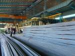 Thị trường vật liệu xây dựng đang dần khởi sắc
