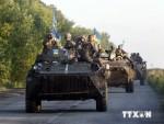 Ukraine: Phát hiện lực lượng tham chiến thứ ba ở Donbass