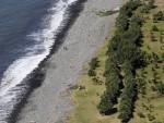Tìm thấy cửa máy bay được cho của máy bay MH370 ở Reunion