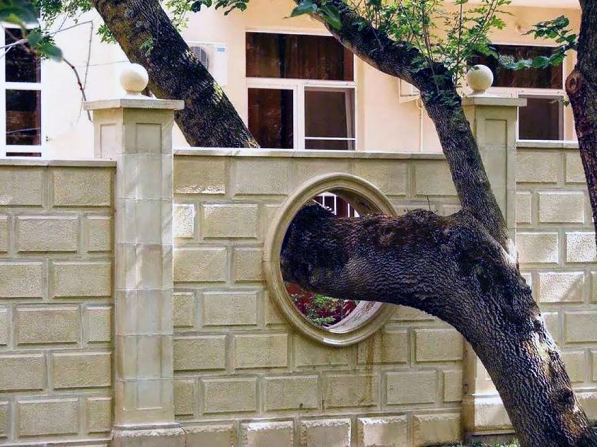 """235505baoxaydung image010 CÙng nhìn qua những thiết kế thông minh """"làm bạn"""" với cây xanh"""