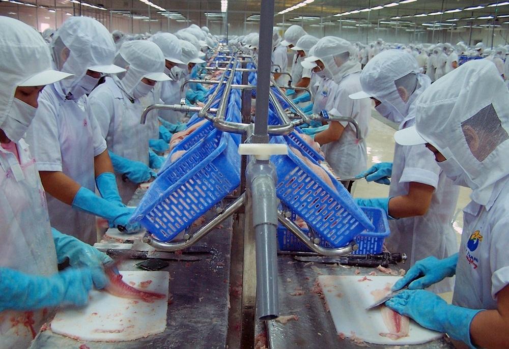 Đồng bằng sông Cửu Long: Đối mặt khó khăn với dịch Covid-19, cả 1.000 doanh nghiệp giải thể