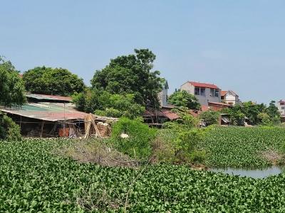 Vĩnh Phúc: Xác minh vi phạm đất đai tại thị trấn Yên Lạc