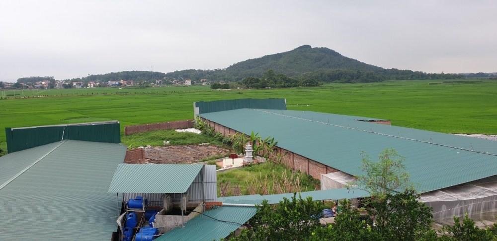 Phú Bình (Thái Nguyên): Tràn lan tình trạng xây dựng trái phép trên đất nông nghiệp