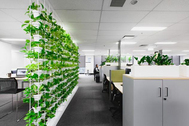 Những yếu tố cần lưu ý khi thiết kế văn phòng xanh