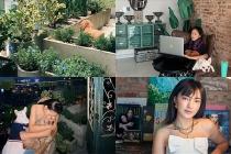 Châu Bùi sống trong căn hộ tự thiết kế ngập tràn cây xanh