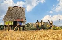Những mái nhà rông truyền thống - 'trái tim' của các buôn làng