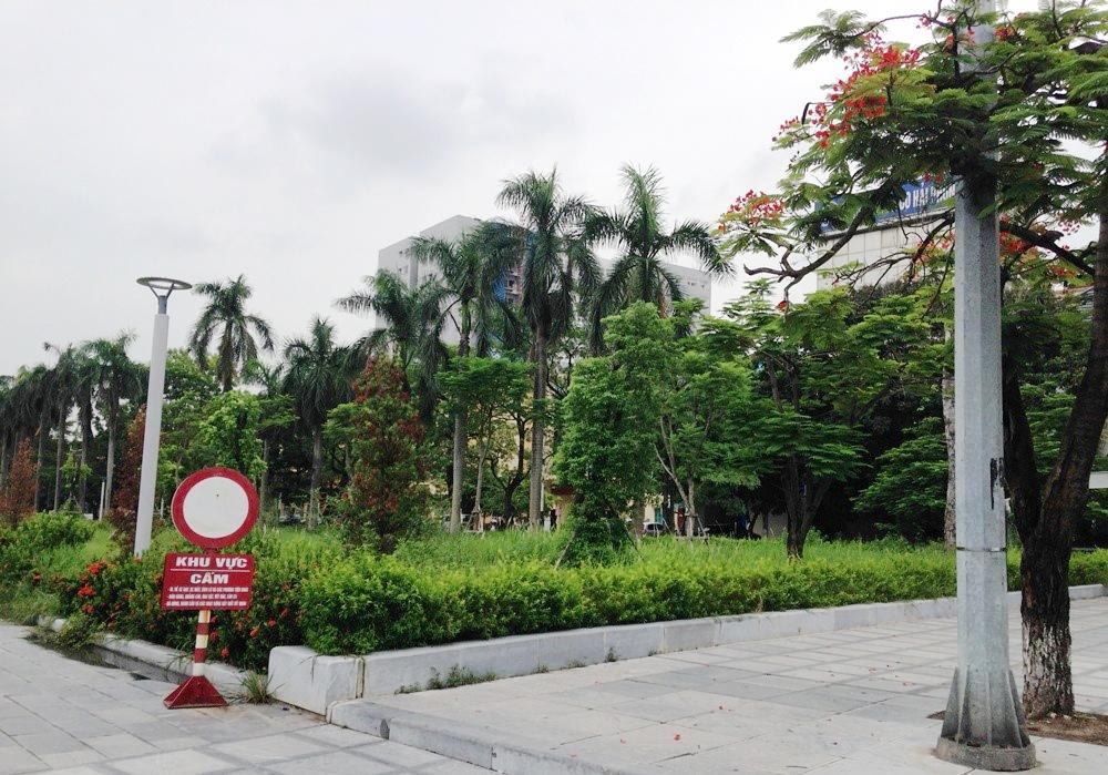 Hải Phòng: Giải quyết bất cập trong quản lý, chăm sóc vườn hoa tại dải trung tâm thành phố