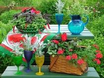 Một số loại cây và phụ kiện giúp sân vườn thân thiện với môi trường