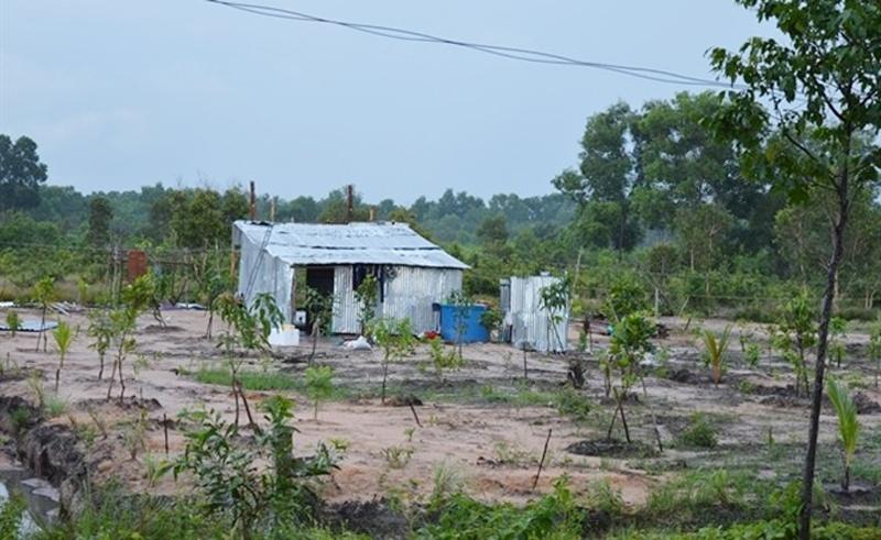 Đất trồng cây hàng năm có xây dựng nhà ở được xác định là loại đất gì?