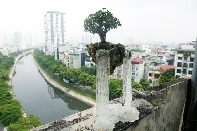 """Bất ngờ với những """"hòn đảo bay"""", tiểu cảnh bay lần đầu xuất hiện ở Hà Nội"""