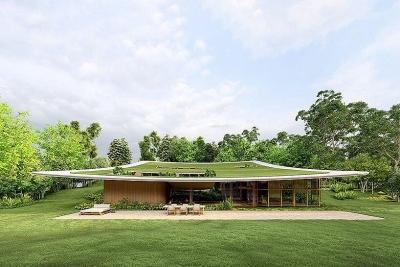 Ngôi nhà 'tàng hình' nhờ dùng thảm cỏ làm mái