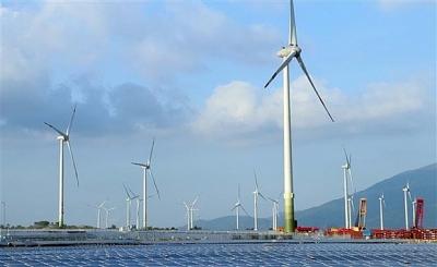 Đưa vào vận hành thương mại Dự án Điện gió số 5-Ninh Thuận