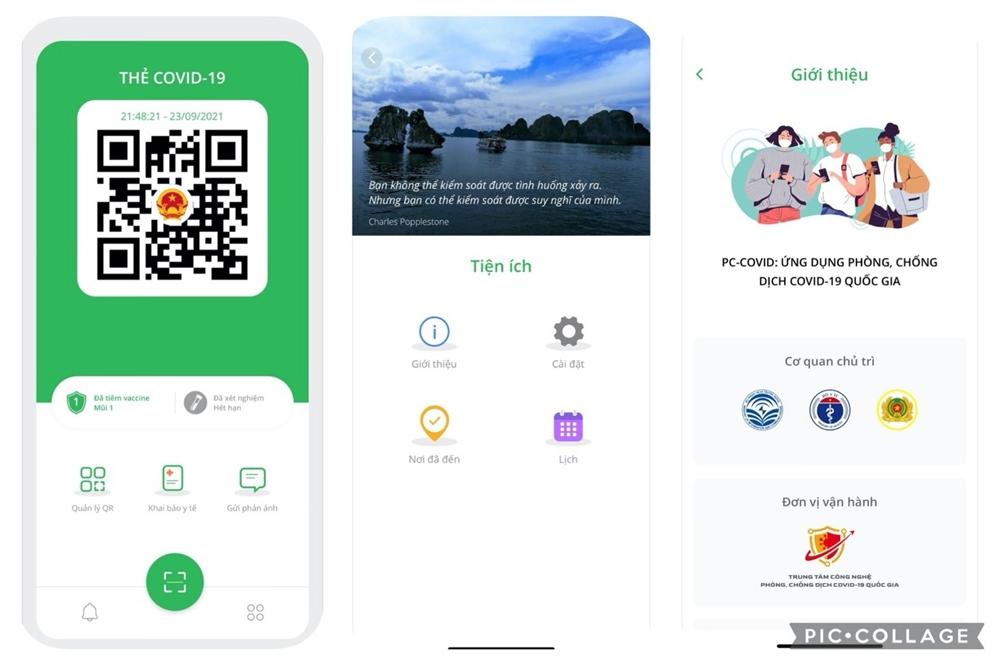 Khánh Hòa: Thí điểm sử dụng thẻ xanh, thẻ vàng của ứng dụng Bluezone