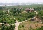 Bên trong các khu sinh thái ở giữa bãi sông Hồng