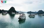 UNESCO đánh giá cao nỗ lực quản lý bảo tồn di sản Vịnh Hạ Long