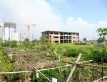 Hà Nội: Cần sớm thu hồi Dự án bệnh viện quốc tế Việt Mỹ bỏ hoang, gây lãng phí