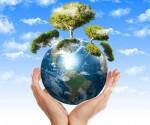 """Trồng rừng và giảm ăn thịt - Cách tốt nhất để làm """"mát"""" Trái Đất"""