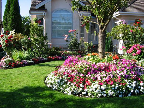 Những lưu ý khi phối màu thiết kế sân vườn