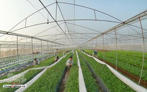 Hưng Yên: 100% xã đạt chuẩn nông thôn mới