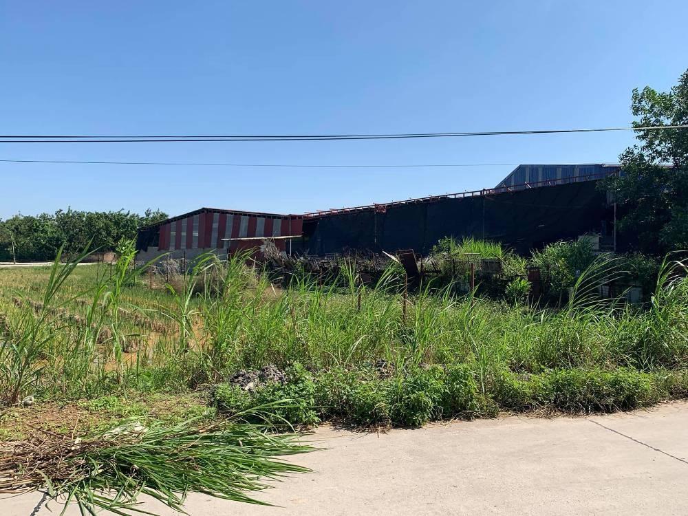 Tân Yên (Bắc Giang): Tự ý chuyển đổi hàng nghìn m2 đất nông nghiệp thành xưởng sấy nông sản