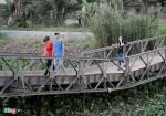 Liều mình vượt rào qua cầu gãy ở Sài Gòn