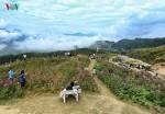 Đẹp ngỡ ngàng điểm du lịch trên đỉnh Pha Đin