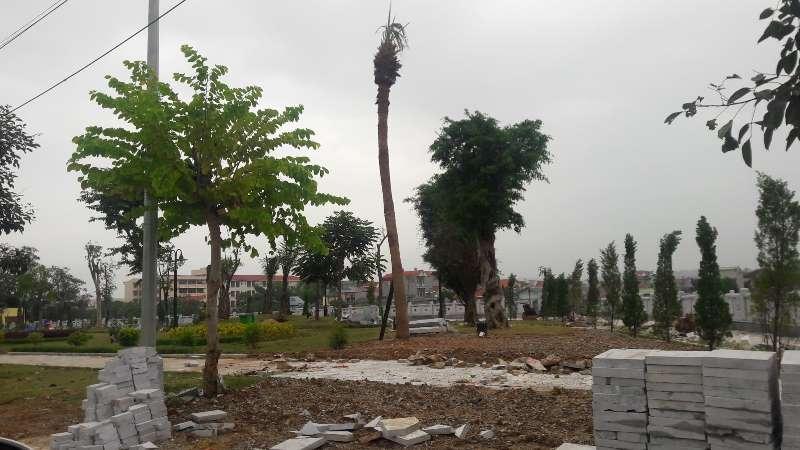 Lạng Sơn: Vì sao người dân liên tục khiếu nại về Dự án Công viên bờ sông Kỳ Cùng giai đoạn 2?