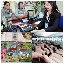 nghi quyet phien hop chinh phu thuong ky thang 102019