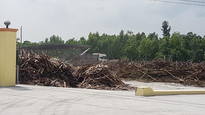 Uông Bí (Quảng Ninh): 2 xưởng băm dăm gỗ mở trái phép trong khu dân cư