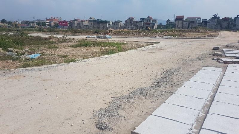 Uông Bí (Quảng Ninh): Trồng cây phủ xanh đất trống đô thị