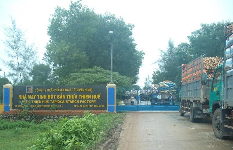 Thừa Thiên - Huế: Xử phạt gần 500 triệu đồng nhà máy tinh bột sắn gây ô nhiễm môi trường