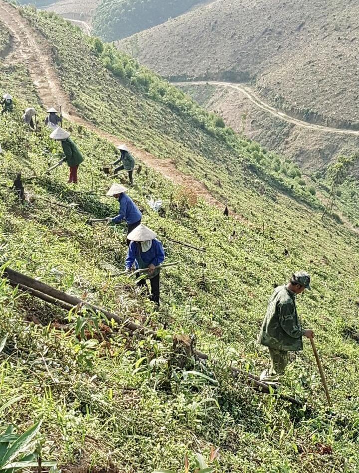 Bắc Giang: Cần làm rõ việc tranh chấp đất rừng giữa Lâm trường Đồng Sơn và hơn 50 hộ dân tại Yên Thế