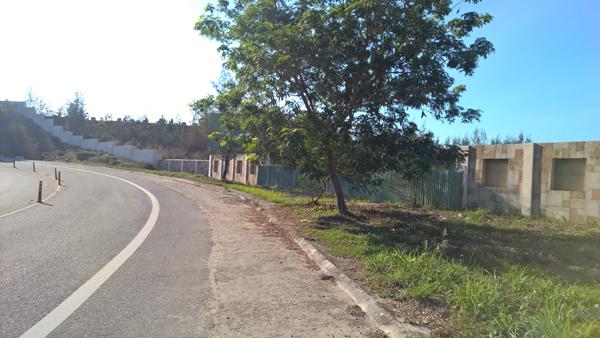 Làng biệt thự 'ma' trên bán đảo Sơn Trà