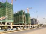 Quản lý chứng chỉ hành nghề hoạt động xây dựng