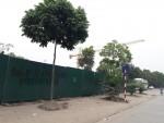 Chưa có phép Dự án Phương Đông Green Park đã thi công rầm rộ