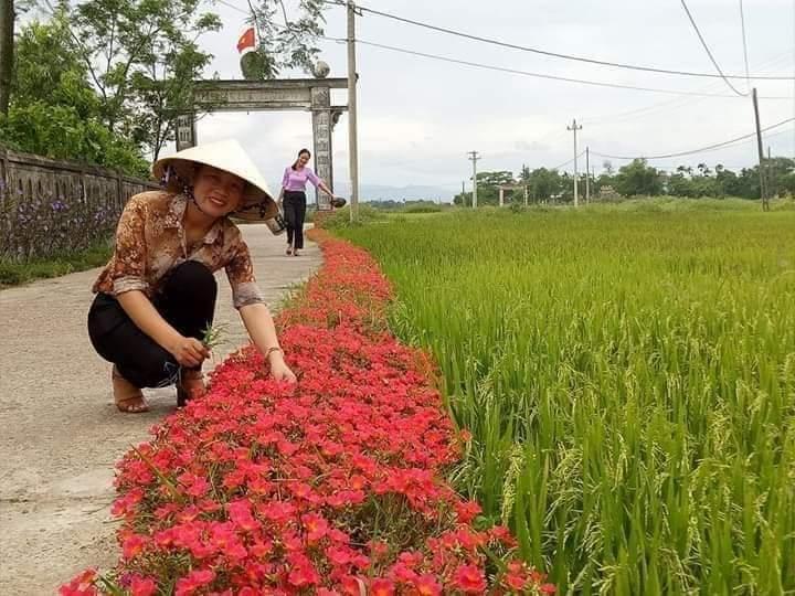 Quảng Trị: Thêm 8 xã đạt chuẩn nông thôn mới