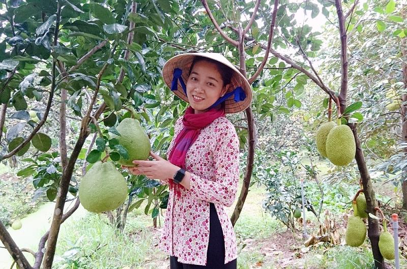 kham pha xu so cu lao miet vuon song nuoc vinh long