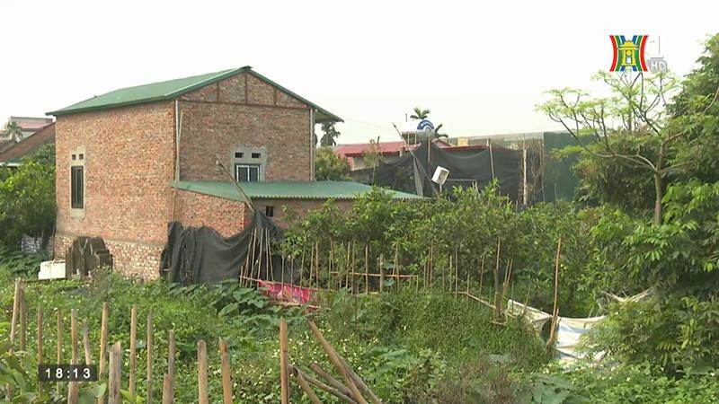 Rầm rộ tình trạng xây dựng trái phép trên đất nông nghiệp tại xã Song Phương, huyện Hoài Đức