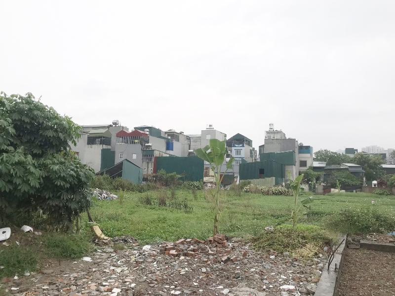 Thanh Xuân (Hà Nội): Nhan nhản công trình xây dựng không phép trên đất nông nghiệp dọc tuyến phố Bùi Xương Trạch