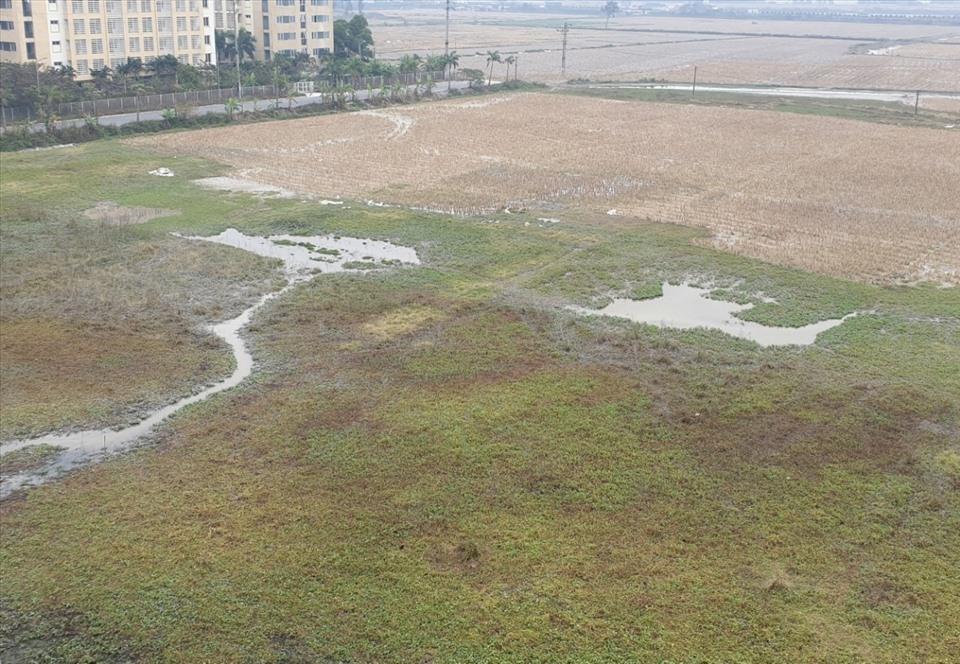 Đua nhau phân lô bán nền trái luật dự án bất động sản tại Bắc Ninh
