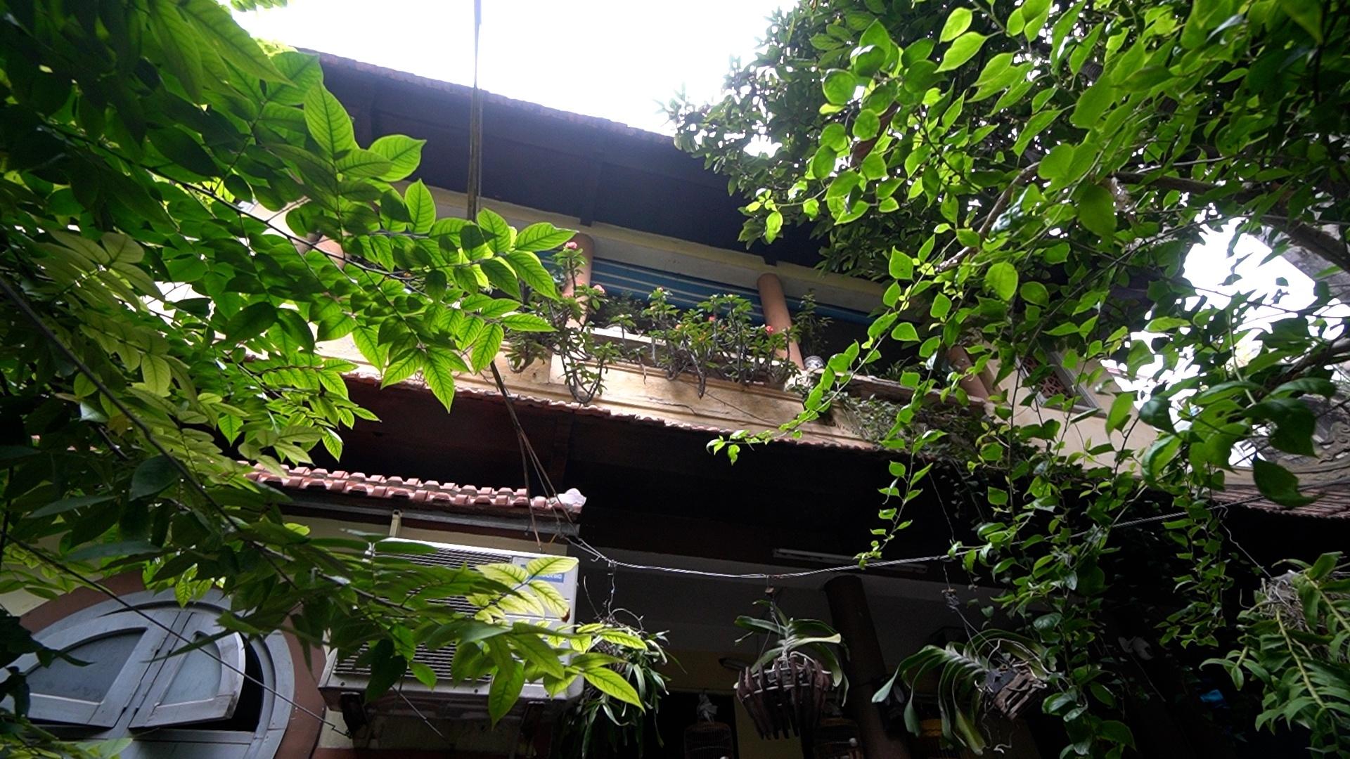 Cuộc sống trong căn biệt thự 70 năm tuổi ở phố cổ Hà Nội