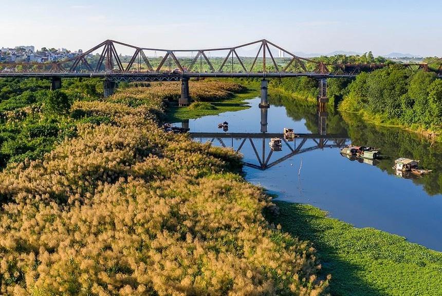 Cầu Long Biên mùa cỏ lau nhìn từ flycam
