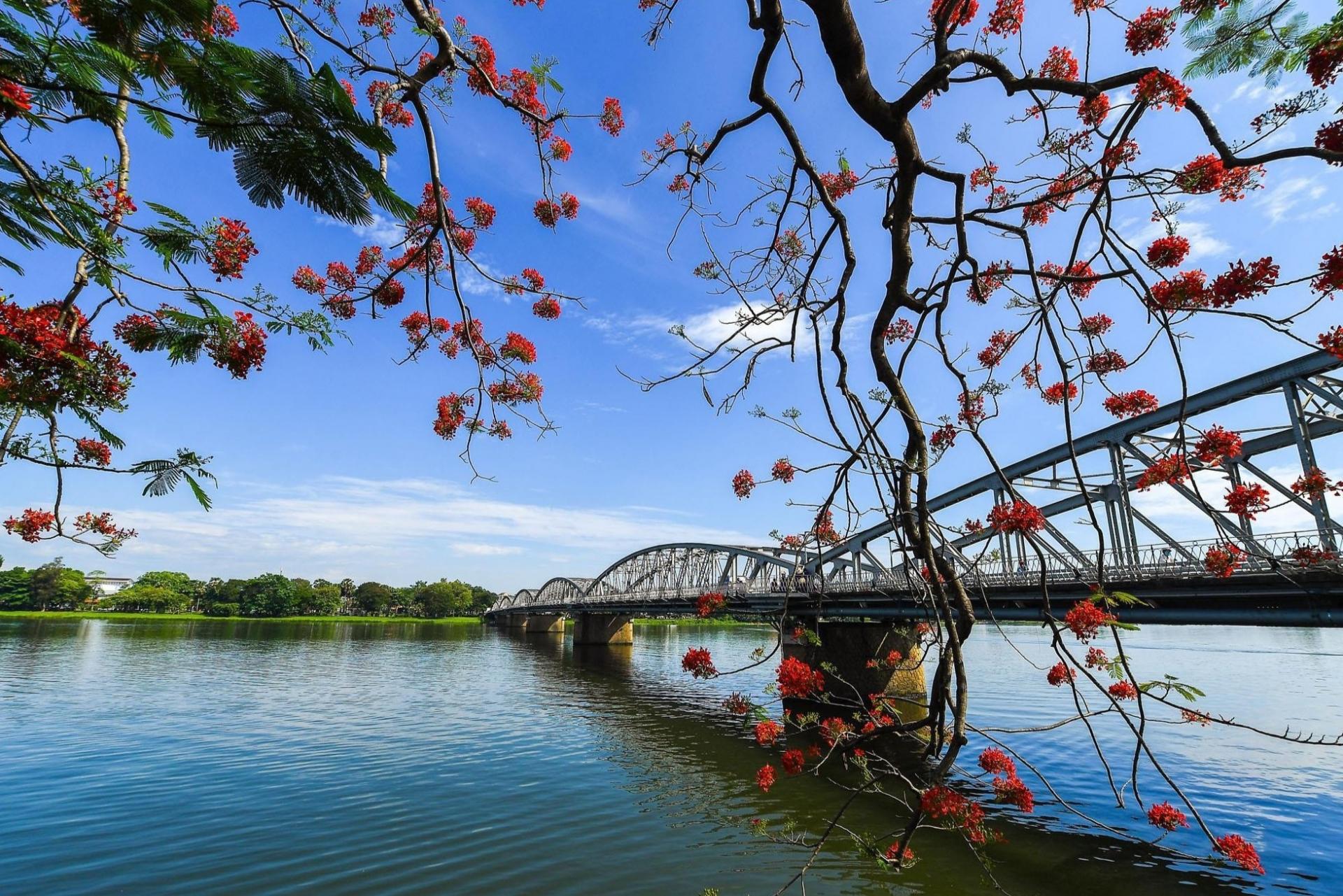 Vẻ đẹp của cây cầu biểu tượng xứ Huế