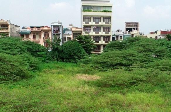 Dân bức xúc vì 8.000 m2 đất vàng để hoang, lãng phí