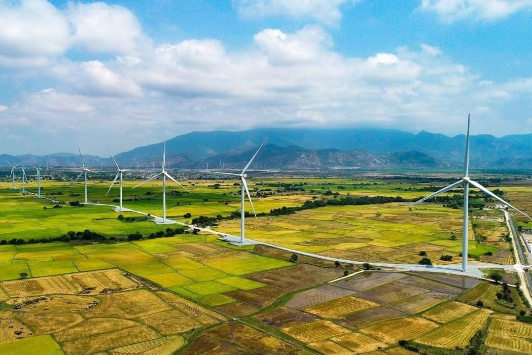 Cánh đồng quạt gió đẹp như trời Tây ở Ninh Thuận nhìn từ trên cao