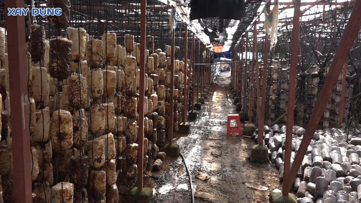 """Nghệ An: Dân """"tố"""" Công ty sản xuất nấm sinh học An Hà gây ô nhiễm môi trường"""