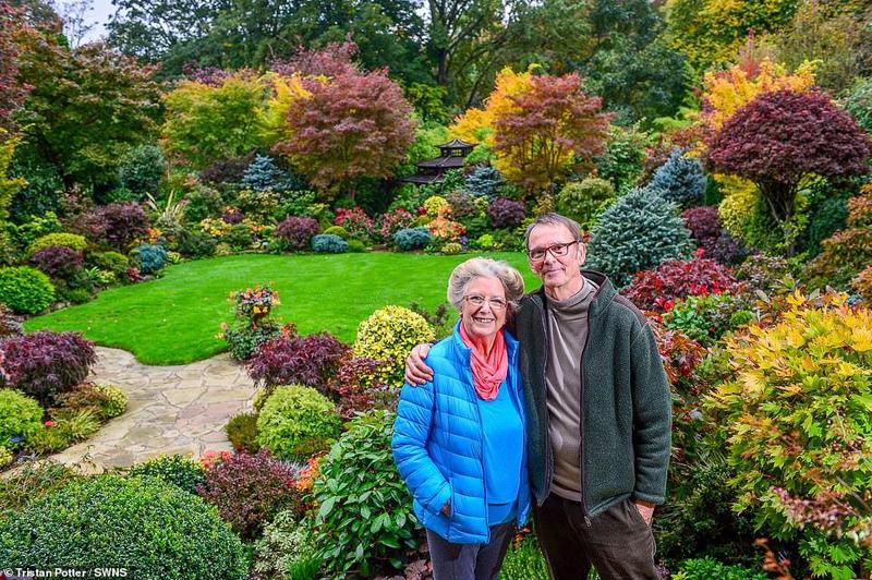 Ngắm nhìn khu vườn tuyệt tác của cặp vợ chồng già người Anh